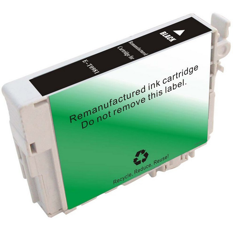 Epson T098120 Black Ink Cartridge
